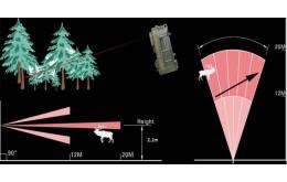 Советы по установке фотоловушки в лесу